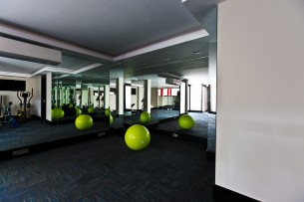 Private Gym in a Modern Aesthetic In Sierra Blanca, Marbella Golden Mile