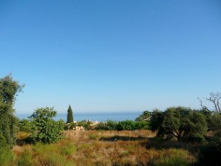 Plot in Cascada de Camojan, 14.311 m2 with sea and mountain views, suitable to build individual villas. Ref: DM0336