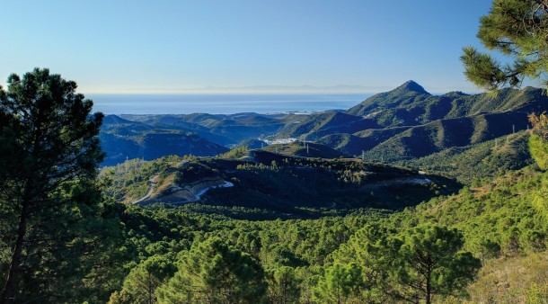 Marbella Land prices rise